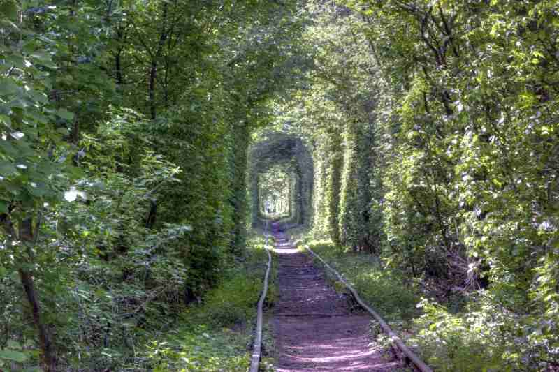 Тоннель Любви возле Ровно
