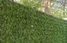 Зеленая искусственная изгородь. Какой она бывает?