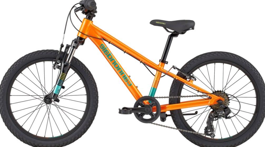 Где в Липецке можно выбрать велосипед для себя и для своей семьи?